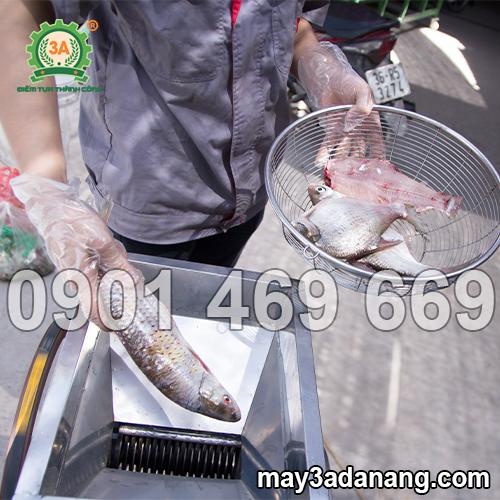 máy cắt cá, máy cắt cá tươi, máy cắt cá bằng tay, máy cắt cá mồi, giá máy cắt cá, máy cắt cá mồi dùng cho ngành thủy sản, máy cắt cá thủy sản, máy cắt cá cho ba ba, máy cắt cá 3a, cấu tạo máy cắt cá