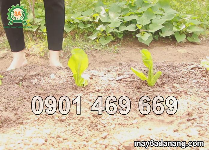 máy trồng cây, máy trồng cây cầm tay, máy trồng rau, máy trồng cây con, máy gieo trồng, máy trồng cây rau, thiết bị trồng cây, máy trồng rau cầm tay, máy nông nghiệp, 3a, máy 3a đa năng,