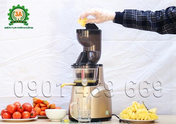 máy ép trái cây chậm, máy ép nước hoa quả